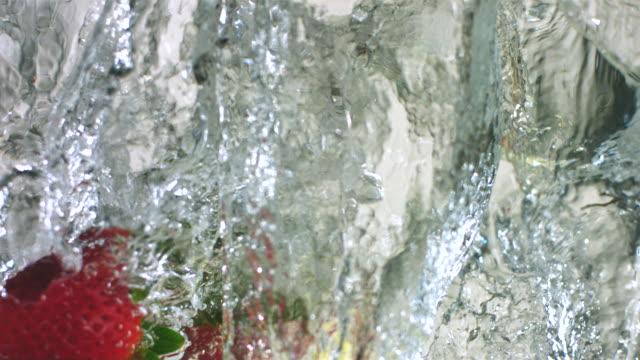 slo mo ecu strawberries and lemon slices falling into water - mellanstor grupp av objekt bildbanksvideor och videomaterial från bakom kulisserna