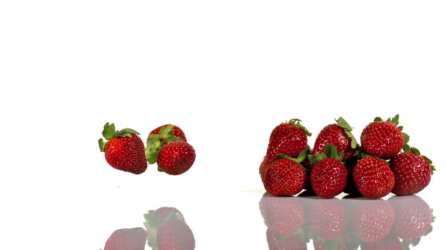 Strawberries, fragaria vesca, Fruits falling against White Background, Slow Motion