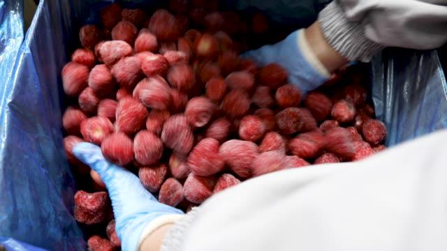 erdbeeren im karton - gefrierkost stock-videos und b-roll-filmmaterial