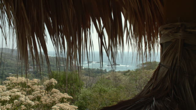 cu straws of palapa house roof with landscape in background / mazunte, oaxaca, mexico - palapa stock videos & royalty-free footage