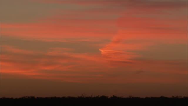 vídeos y material grabado en eventos de stock de streaky pink and orange clouds cover the sky over a darkening landscape. - cirro