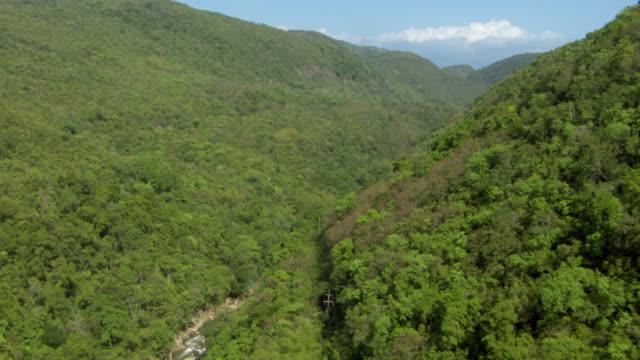 A stream cuts through the Blue Mountains in Jamaica