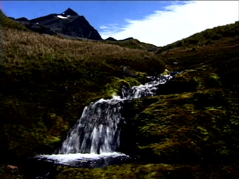 a stream flowing down a mountain meadow - alm stock-videos und b-roll-filmmaterial