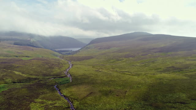 stream flowing to sally gap in wicklow ireland, aerial view - heather stock videos & royalty-free footage
