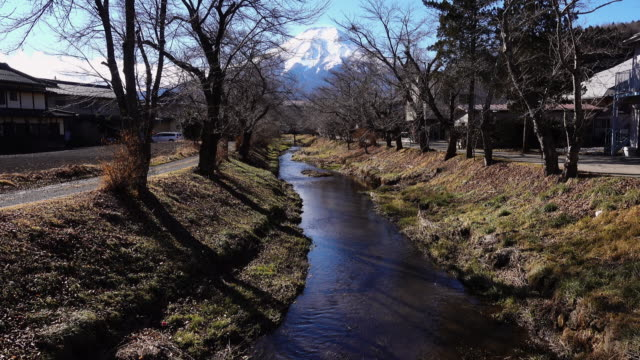 stream flowing towards mt. fuji - bare tree stock videos & royalty-free footage