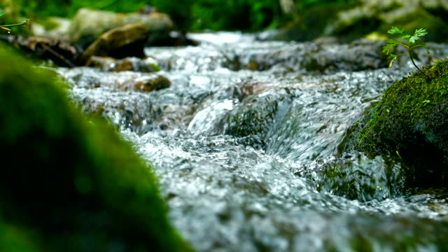 stream flowing water - moss stock videos & royalty-free footage