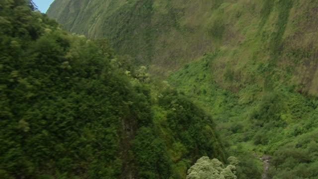 A stream flows through a beautiful and lush Hawaiian valley.