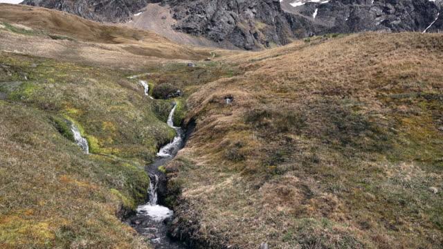 Stream, Grytviken, South Georgia, Southern Ocean