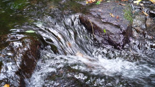 stream in japan forest - satoyama scenery stock videos & royalty-free footage