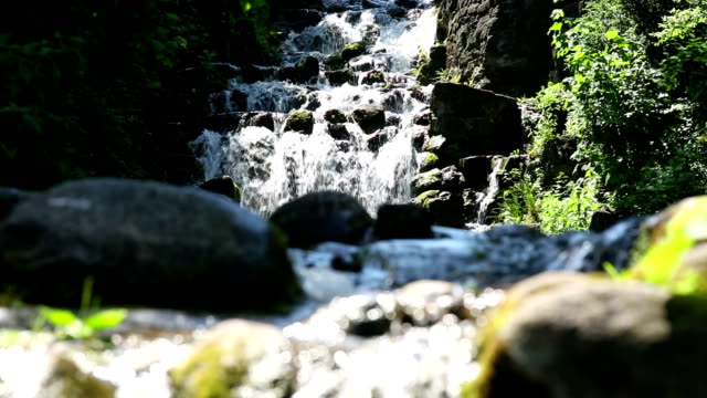 stream in spring forest - boulder rock stock videos and b-roll footage
