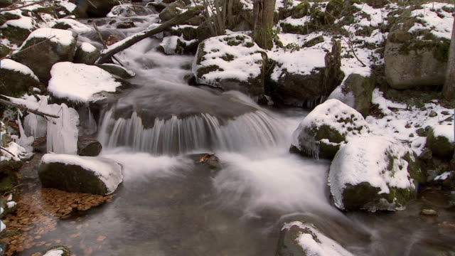 stream in the pyrenees mountains, timelapse - 40 o più secondi video stock e b–roll