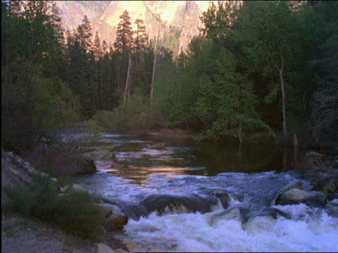 vídeos de stock, filmes e b-roll de stream moving thru forest / yosemite national park, california - 2001