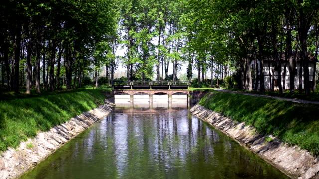 flusso del fiume artificiale attraverso una diga nella foresta - diga video stock e b–roll