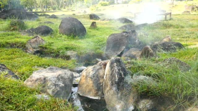 vidéos et rushes de flux de la source chaude parmi pré avec soleil du matin - piscine thermale
