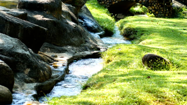 Stream of Small River from Hot Spring with Morning Sunlight