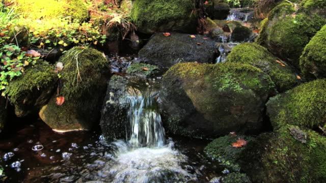 Stream of water over stones.