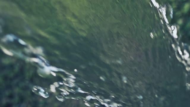 vídeos y material grabado en eventos de stock de chorro de agua rociando desde la manguera de jardín en la hierba - manguera