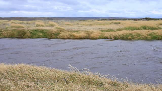 vídeos de stock e filmes b-roll de ms stream running in middle of plain with yellow wild grasses blowing in wind / isla grande de tierra del fuego, chilean patagonia, chile - plano picado