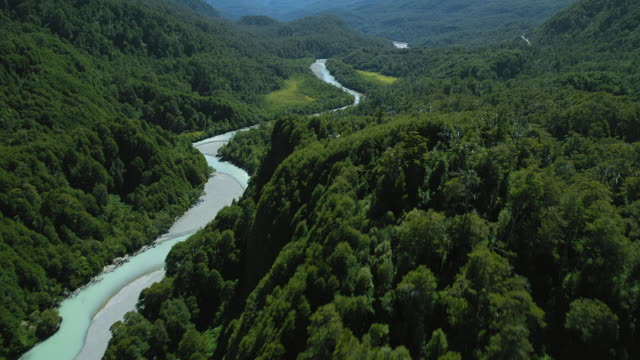 stream through forest in patagonia - geographical locations stock videos & royalty-free footage