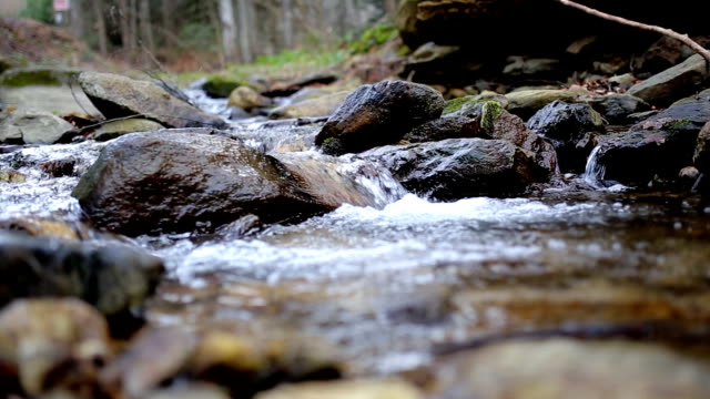 stream (hd) - spring flowing water stock videos & royalty-free footage