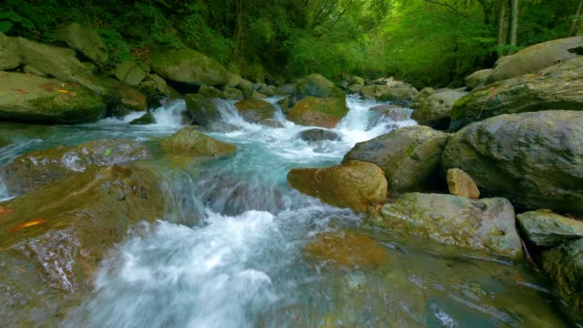 stream water falling in forest - flowing water stock videos & royalty-free footage