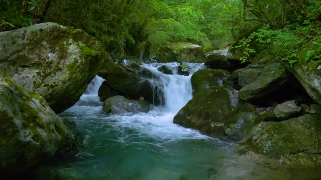 stream water falling in forest - waterfall stock videos & royalty-free footage