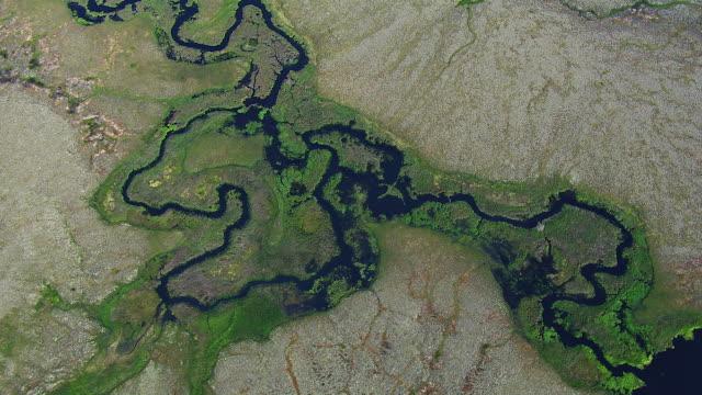 vidéos et rushes de streams meander through wetlands - torrent