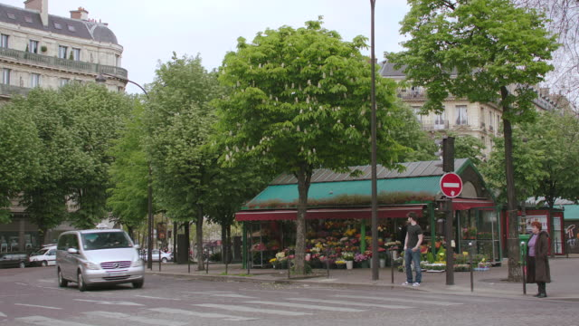 vídeos de stock e filmes b-roll de ms street, crosswalk, flower shop in background / paris, france - florista