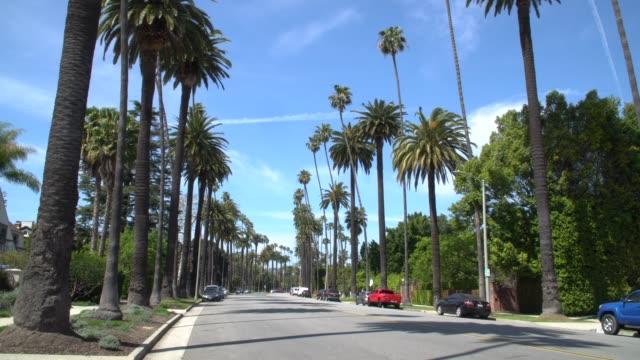 vidéos et rushes de rue à beverly hills bordée de palmiers-établissant le projectile - beverly hills