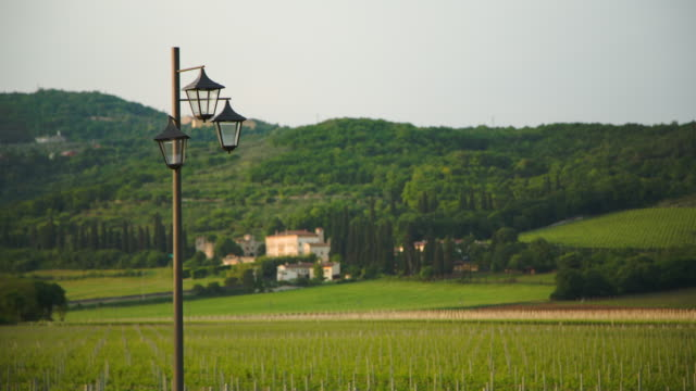 a street lamp in the vineyard with an old villa in the blurred distant background. - idyllic stock-videos und b-roll-filmmaterial