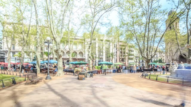 street market in plaza constitución (constitution square), also known as plaza matriz, montevideo downtown, uruguay - montevideo stock videos & royalty-free footage