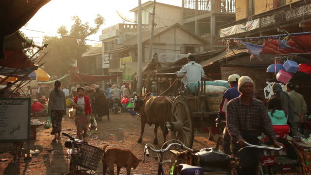 ws street market / prome, pyay, myanmar - tiergruppe stock-videos und b-roll-filmmaterial