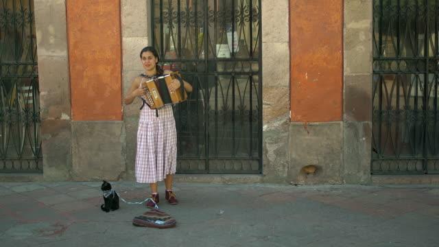 street musician plays accordion w/pet cat - frau gefesselt stock-videos und b-roll-filmmaterial