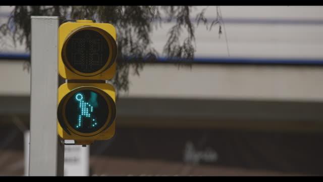 Street pedestrian light