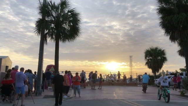 street performers and vendors in mallory square, key west - key west stock videos & royalty-free footage