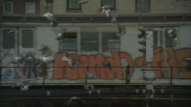 stockvideo's en b-roll-footage met ms, tu, street scene, bronx, new york city, new york, usa  - 1977
