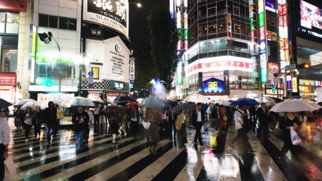 street scenes in kabukicho on a rainy night - population explosion stock videos and b-roll footage