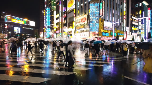 vídeos de stock e filmes b-roll de street scenes in kabukicho on a rainy night - bairro de shinjuku
