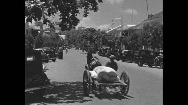 vidéos et rushes de street scenes of nassau / horse-drawn wagons and carriages, cars and trucks / people at the dock / coastline / note: exact day not known - bahamas