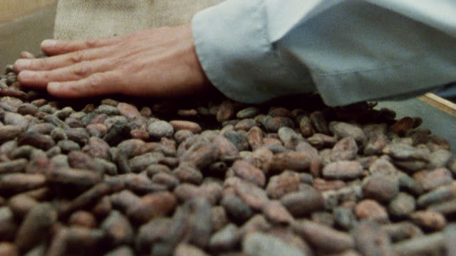 1985 montage street vendor pouring, weighing, and crushing cocoa beans / city of london, england† - the natural world stock videos & royalty-free footage