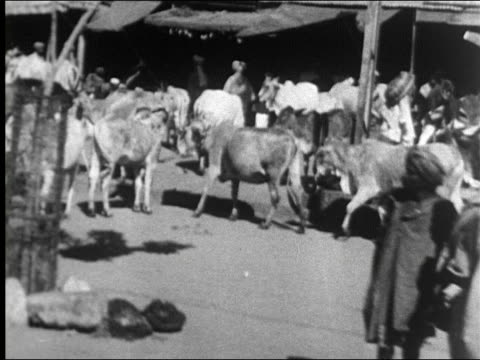 1942 - streets of Delhi