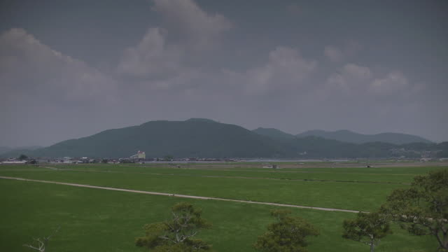 stretch of green rice fields, saga, japan - 水田点の映像素材/bロール