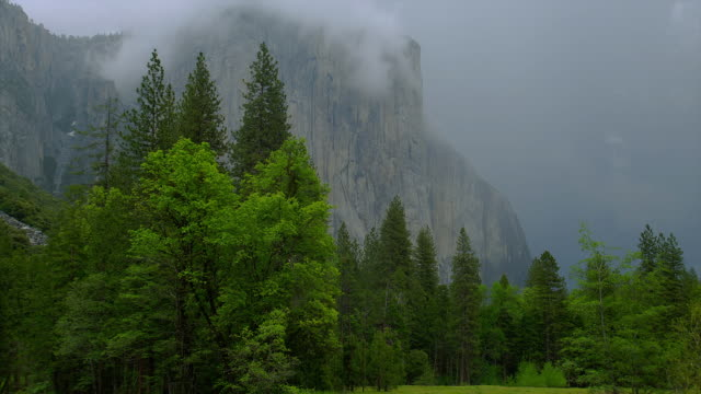 striking, green trees surround el capitan and a lake as storm clouds move in. - カリフォルニアシエラネバダ点の映像素材/bロール