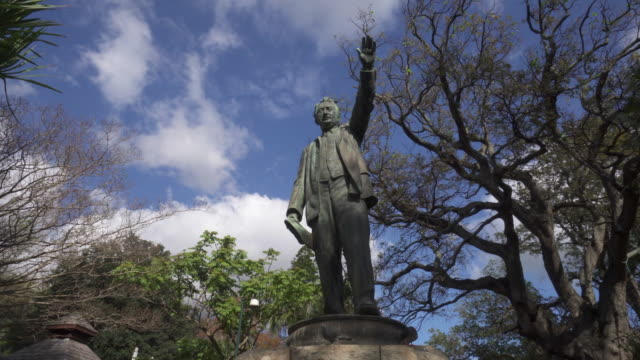 a striking pan of pigeons roosting on a bronze statue with the tops of trees and a blue sky with patchy clouds - cape town, south africa - colonial stock-videos und b-roll-filmmaterial
