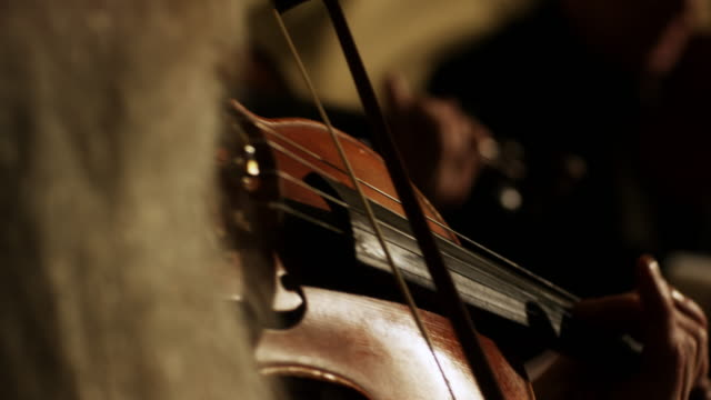 CU R/F String quartet playing for Violin at Hopetoun House / Edinburgh, Scotland, United Kingdom