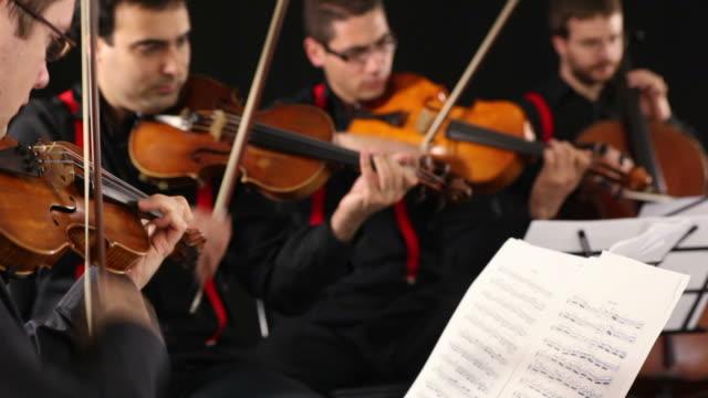 vídeos de stock e filmes b-roll de quarteto de cordas - violino