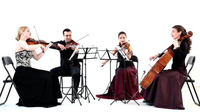 string quartet - string stock videos & royalty-free footage