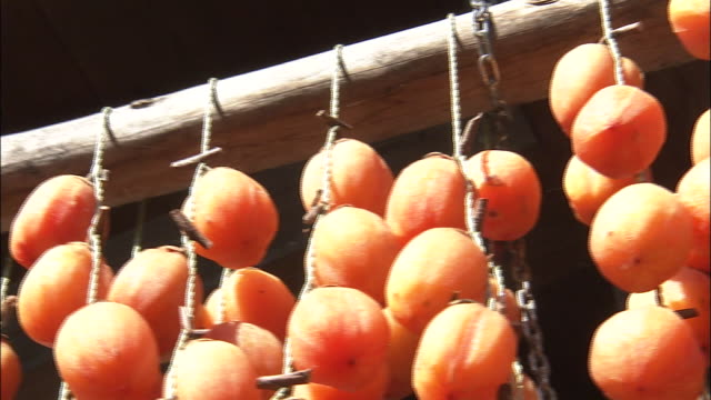 Strings of Saijo persimmons dry on a rack.