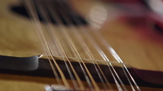 CU Strings of stella guitar / England, United Kingdom
