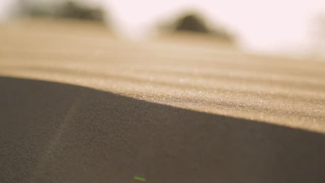 vidéos et rushes de stripped sand dunes, qld island, australia - extreme close up